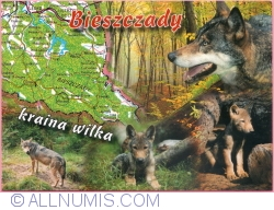 Image #1 of Bieszczady - Land of the wolf (2010)