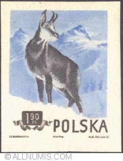 Image #1 of 1,90  złotego 1954 - Chamois (imperf.)