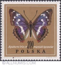Image #1 of 2 złote 1967 - Purple emperor. (Apatura iris)