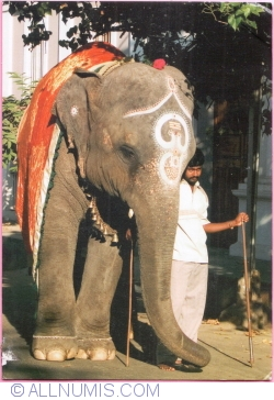 Image #1 of Going to Ganesh Temple