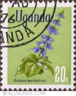 Image #1 of 20 Cents 1969 - Coleus barbatus