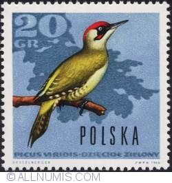 Image #1 of 20 groszy 1966 - Green Woodpecker