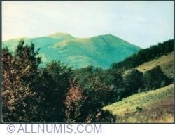 Bieszczady Mountains - Połonina Wetlińska (1253 m.) (1972)