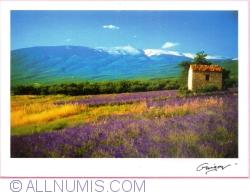 Imaginea #1 a Guégon - Peisaj (2006)