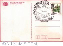 Image #2 of Wieliczka - Salt Mine (1997)