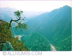 Image #1 of Dunajec River Gorge (1986)