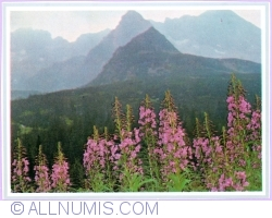 Image #1 of Tatra Mountains - View