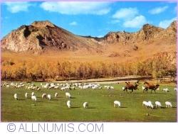 Image #1 of Zabhan Aimak - Bogdyn Gol River.