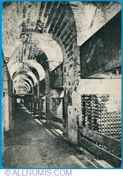 Épernay - The wine cellars