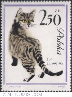 Image #1 of 2,50 złotego -European cat