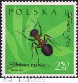 Image #1 of 2,50 złotego- Red ant..
