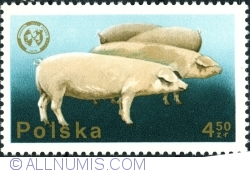 Image #1 of 4,50 Złote 1975 - Pigs