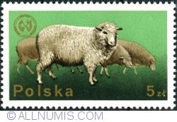 Image #1 of 5 Złotych 1975 - Sheep