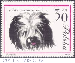 Image #1 of 30 groszy- Polish lowland sheepdog.