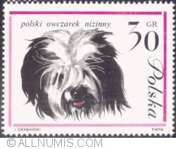 30 groszy- Polish lowland sheepdog.