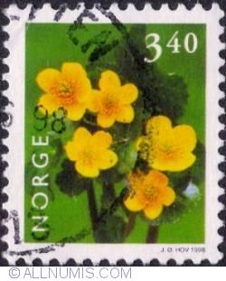 3,40 Kroner 1998 - Marsh marigold