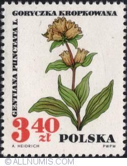 Image #1 of 3,40 złotego 1967 - Spotted gentian (Gentiana punctata)