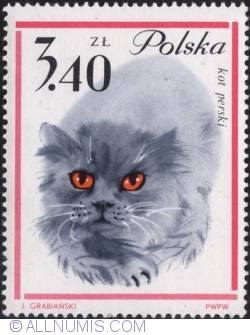 Image #1 of 3,40 złotego - Persian cat