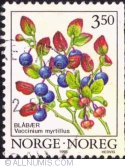 Imaginea #1 a 3,50 Kroner 1995 - Bilberry (Vaccinum Myrtillus)