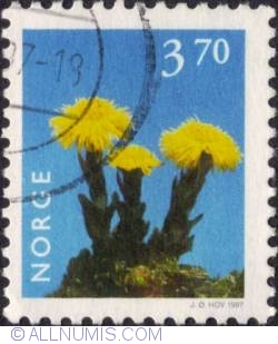 Image #1 of 3,70 Kroner 1997 - Coltsfoot