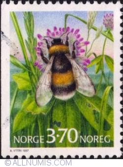 Imaginea #1 a 3,75 Kroner 1997 - Bumblebee