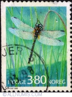 Imaginea #1 a 3,80 Kroner 1998 - Dragonfly