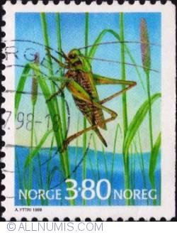 Imaginea #1 a 3,80 kroner 1998 - Grasshopper