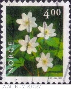 Image #1 of 4 Kroner 1999 - Wood anemone
