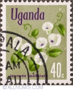 Image #1 of 40 Cents 1969 - Ipomoea spathulata