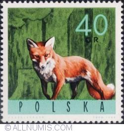 Image #1 of 40 groszy 1965 - Red fox
