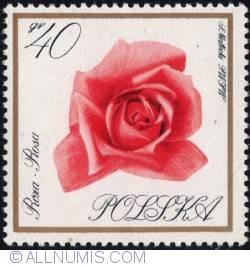 Image #1 of 40 groszy 1966 -Rose