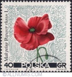 Image #1 of 40 groszy 1967 - Poppy.