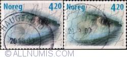 Imaginea #1 a 4,20 Kroner 2000 - Herring