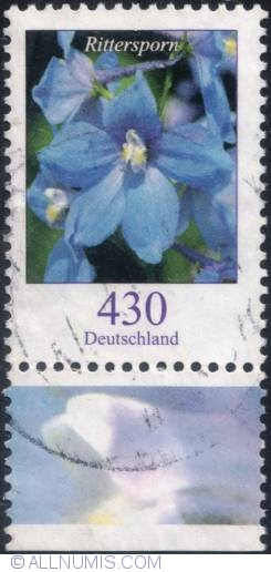 Image #1 of 430 €c- Field larkspur 2005