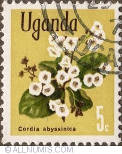 Image #1 of 5 Cents 1969 - Cordia Abyssinica