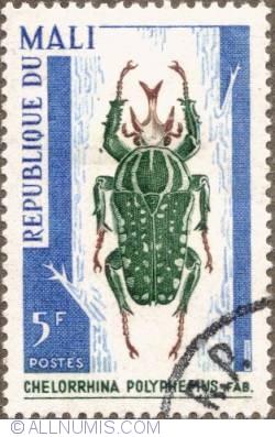 Image #1 of 5 Francs 1967 - Chelorrhina polyphemus