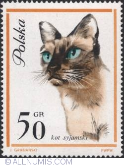Image #1 of 50 groszy - Siamese cat