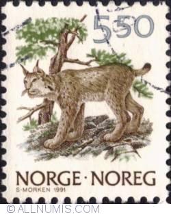 5,50 Kroner 1991 - Lynx