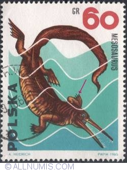 Image #2 of 60 groszy1965 -Mesosaurus