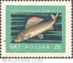 Image #1 of 6,40 złotego - Grayling