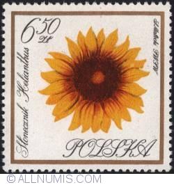 Image #1 of 6,50 złotego1966 - Sunflower
