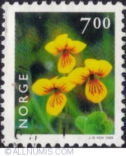 7 Kroner 1999 - Yellow wood violet