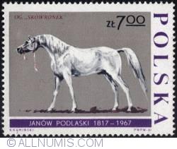 "Image #1 of 7 złotych1967 - Stallion ""Skowronek."""
