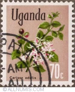 Image #1 of 70 Cents 1969 - Carissa edulis