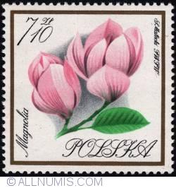 Image #1 of 7,10 złotego1966 -Magnolia