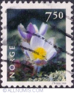 7,50 Kroner 1998 - Pale pasqueflower
