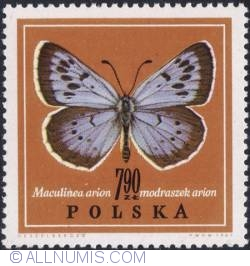 Image #1 of 7,90 złotego 1967 - Large blue. (Maculinea arion)
