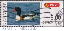Image #1 of 8 Kroner 2011 - Duck