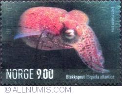 Imaginea #1 a 9 Kroner 2004 - Sepiola atlantica