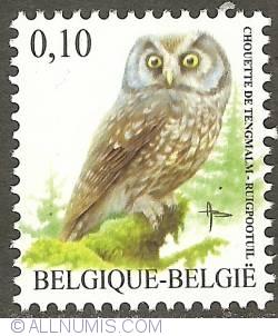 Image #1 of 0,10 Euro 2007 - Boreal Owl